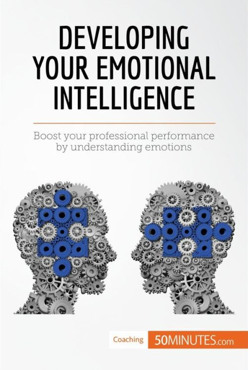 developing emotional intelligence Measure high-performance behavior with hay group's emotional intelligence tool.